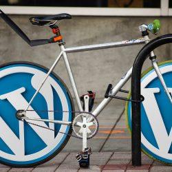 wordpress logo on bike tires